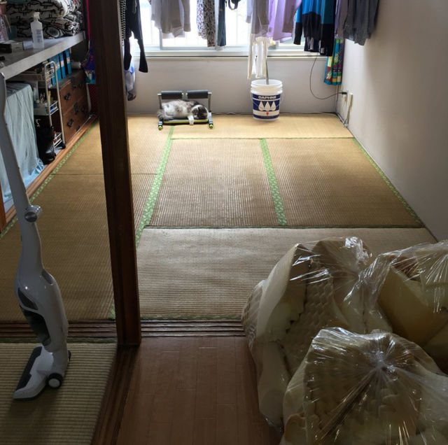 マットレスの処分|ベッドマットを粗大ゴミに出さずに普通ゴミに出す方法