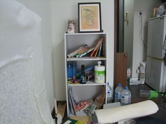 ▼【汚部屋ビフォー写真】室内干しの洗濯物は干しっぱなし状態▼