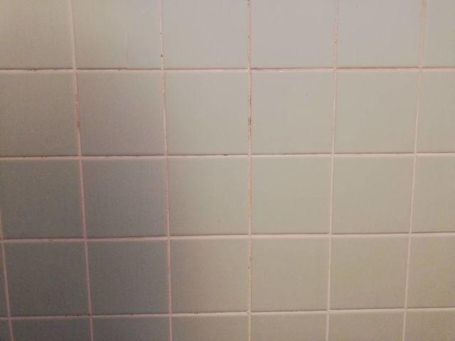 【リノベ】シャワールームにタイヤ用水槽を設置する【後編】