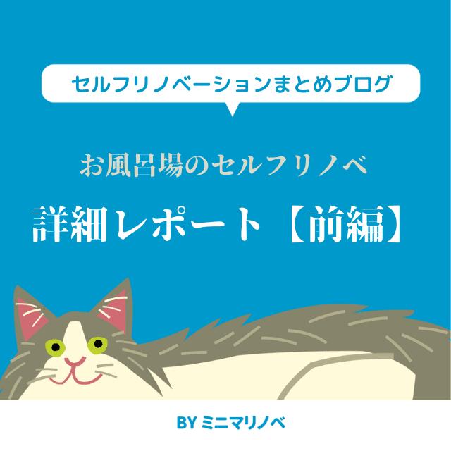 賃貸マンションのお風呂場セルフリノベレポート【前編:浴槽撤去】