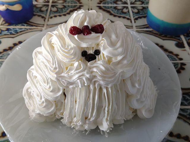 マルチーズケーキのレシピ|ぶきっちょでもOK!1匹1000円の激安デコレーションケーキ