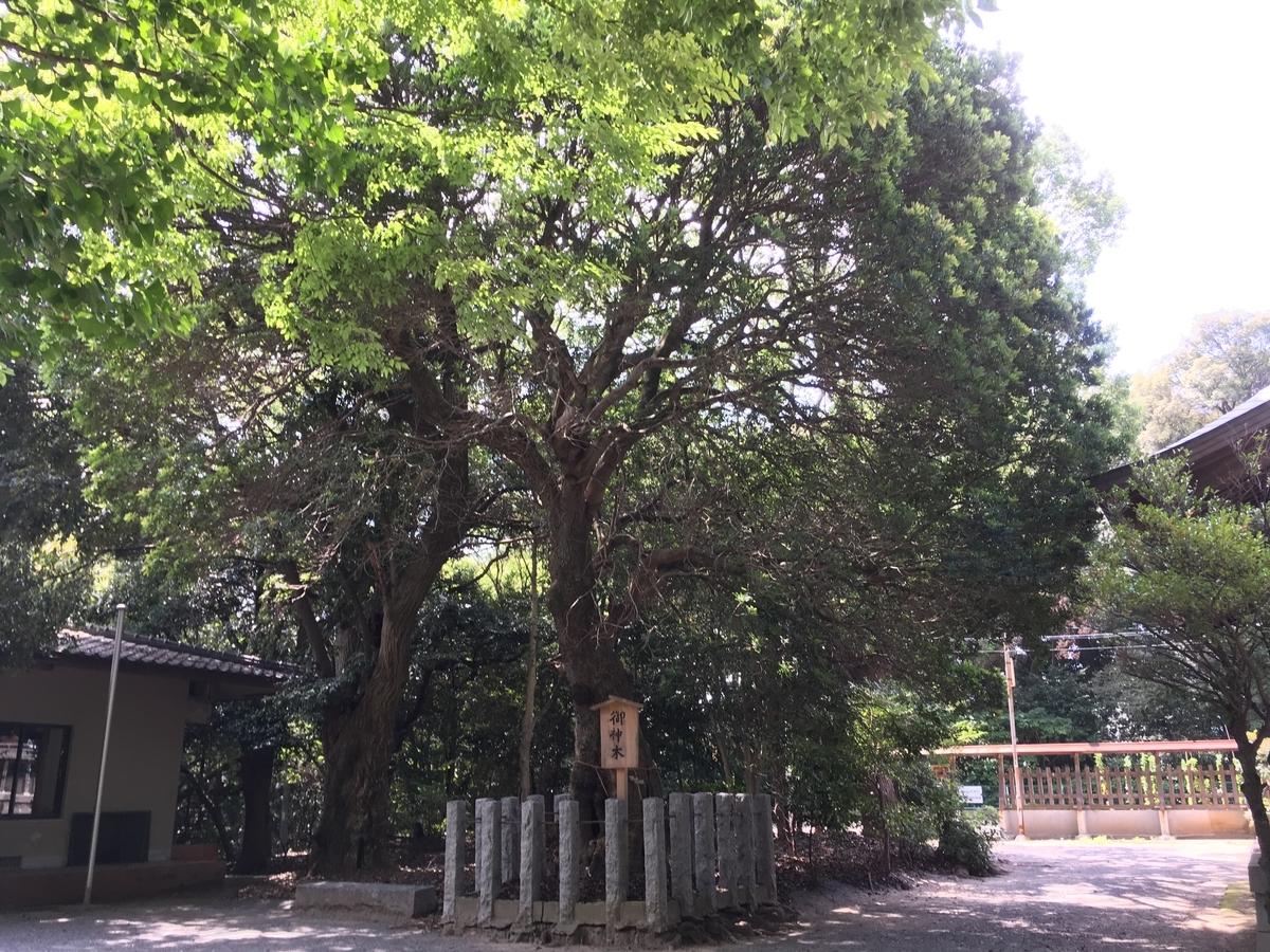 f:id:jikokeihatsukotsu:20190908182434j:plain