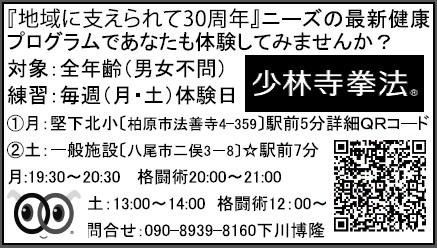f:id:jin-good-g-martial-arts:20160313224546j:plain