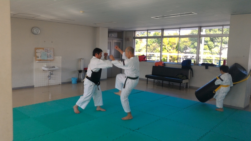 f:id:jin-good-g-martial-arts:20161112170721j:plain