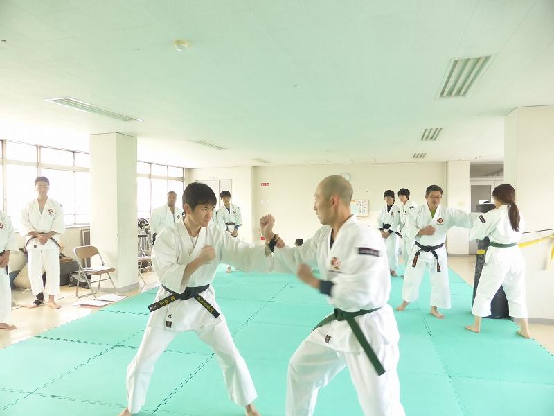 f:id:jin-good-g-martial-arts:20161218095758j:plain