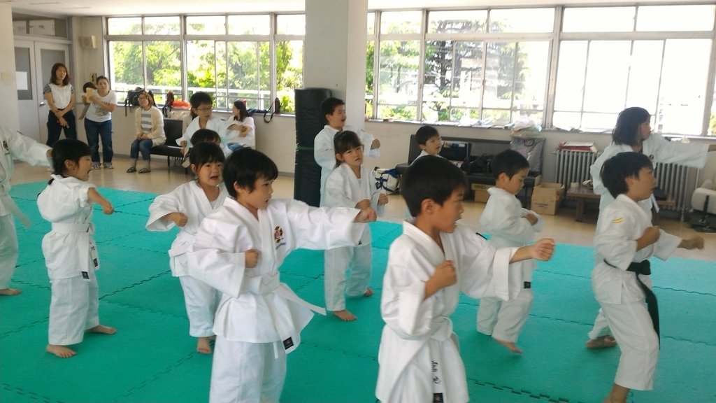 f:id:jin-good-g-martial-arts:20170604190707j:plain