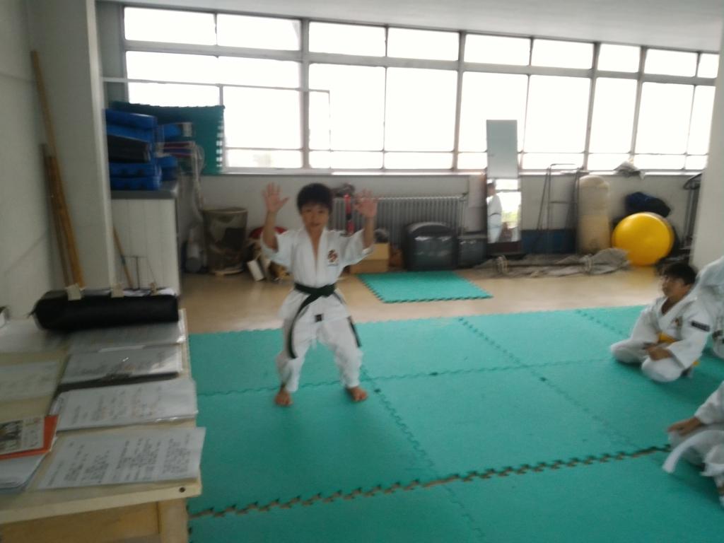 f:id:jin-good-g-martial-arts:20171021224214j:plain