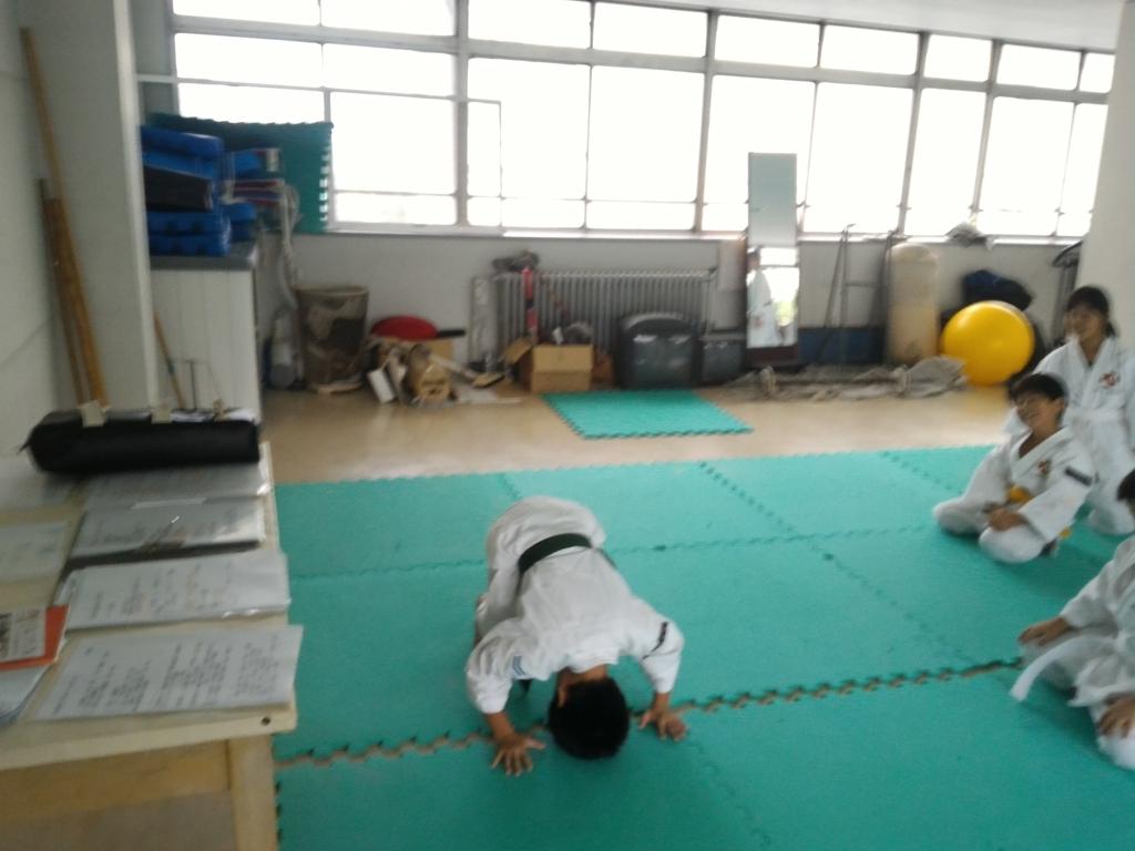 f:id:jin-good-g-martial-arts:20171021225609j:plain