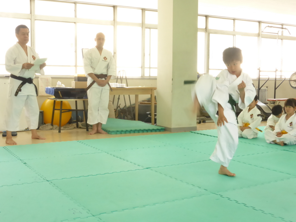 f:id:jin-good-g-martial-arts:20180530172119j:plain