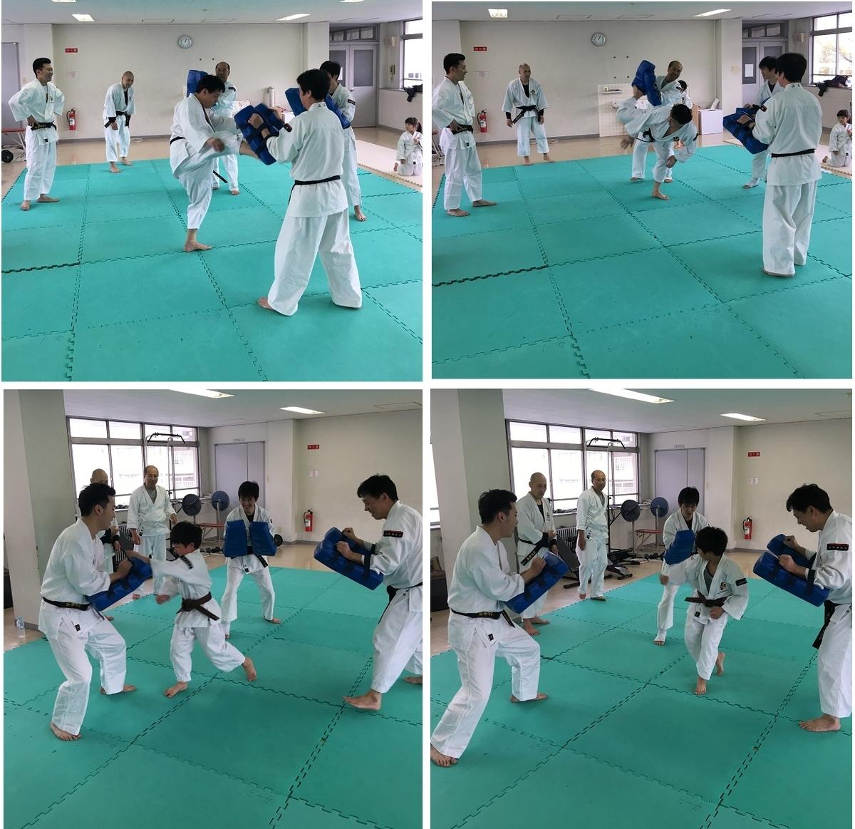 f:id:jin-good-g-martial-arts:20190422221207j:plain