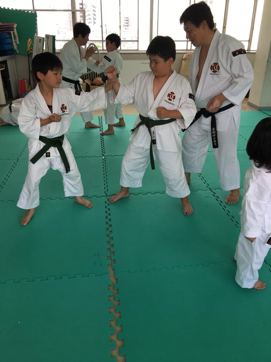 f:id:jin-good-g-martial-arts:20191214174108j:plain