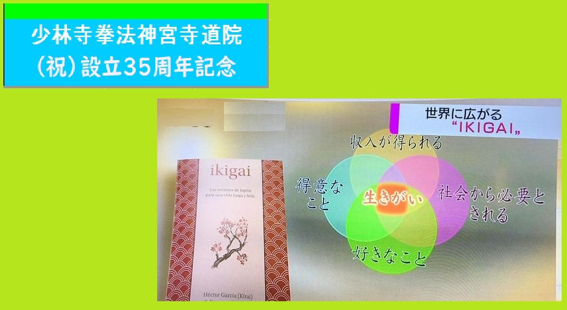 f:id:jin-good-g-martial-arts:20201005225018j:plain