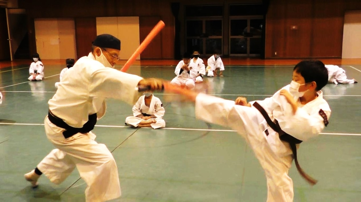f:id:jin-good-g-martial-arts:20201211212641j:plain
