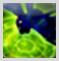 f:id:jinbarion7:20210217114009p:plain