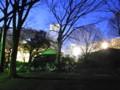 [石神井公園][夜景]