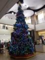 [クリスマス][札幌]