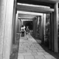 [寺社][鎌倉][モノクロ]