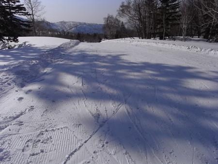 [スキー][影]