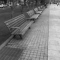 [ベンチ][札幌][モノクロ]