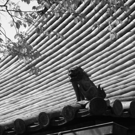 [寺社][奈良][モノクロ]