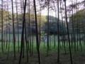 [風景][奈良]