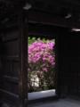 [花][寺社][奈良][☆]