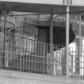 [階段][札幌][モノクロ]
