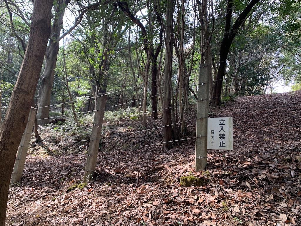 f:id:jinjinchang:20210227193429j:image