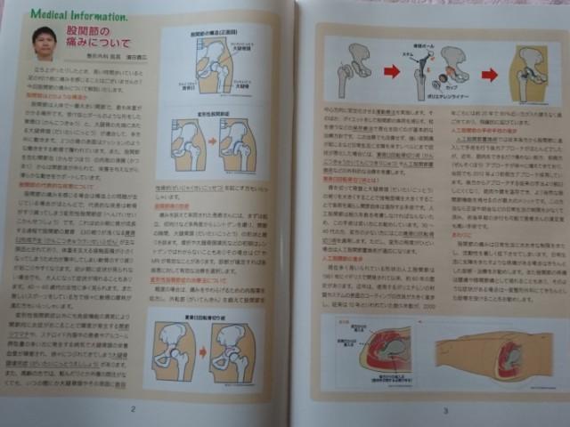 f:id:jinkou-kansethu:20191128141443j:image