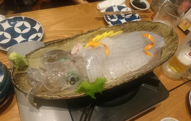 f:id:jinkou-kansethu:20191229235754j:image