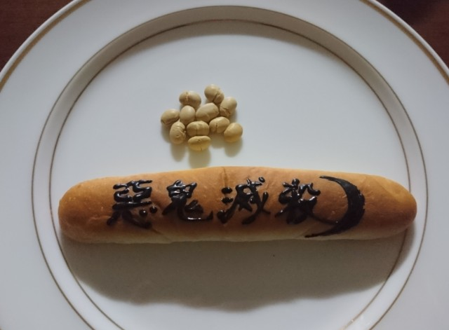 f:id:jinkou-kansethu:20200203061756j:image