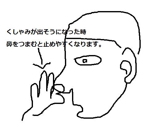 f:id:jinopapa:20190420113822p:plain