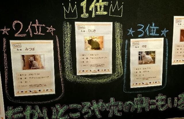 f:id:jinsan77:20170320185222j:image