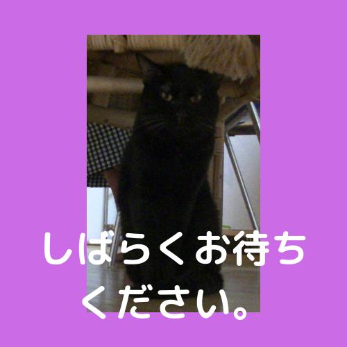 f:id:jinseihapipi:20190902221715p:plain