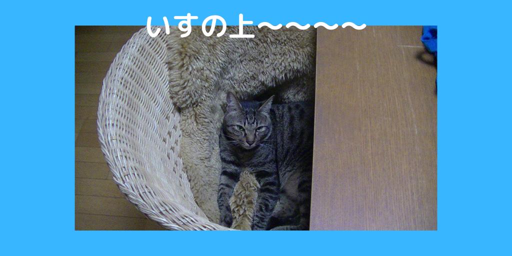 f:id:jinseihapipi:20190903214146p:plain