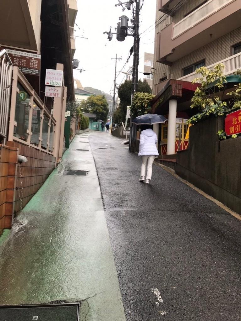f:id:jinshiba0116:20190306003430j:plain