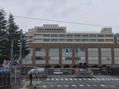 f:id:jinzoubyou-nikki:20170331234855j:plain