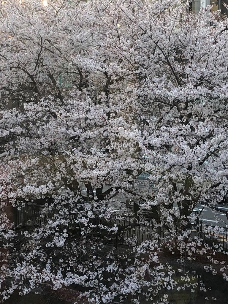 f:id:jironakayama:20180402215833j:image