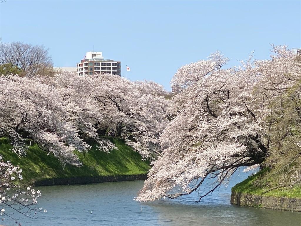 f:id:jironakayama:20200403202030j:image