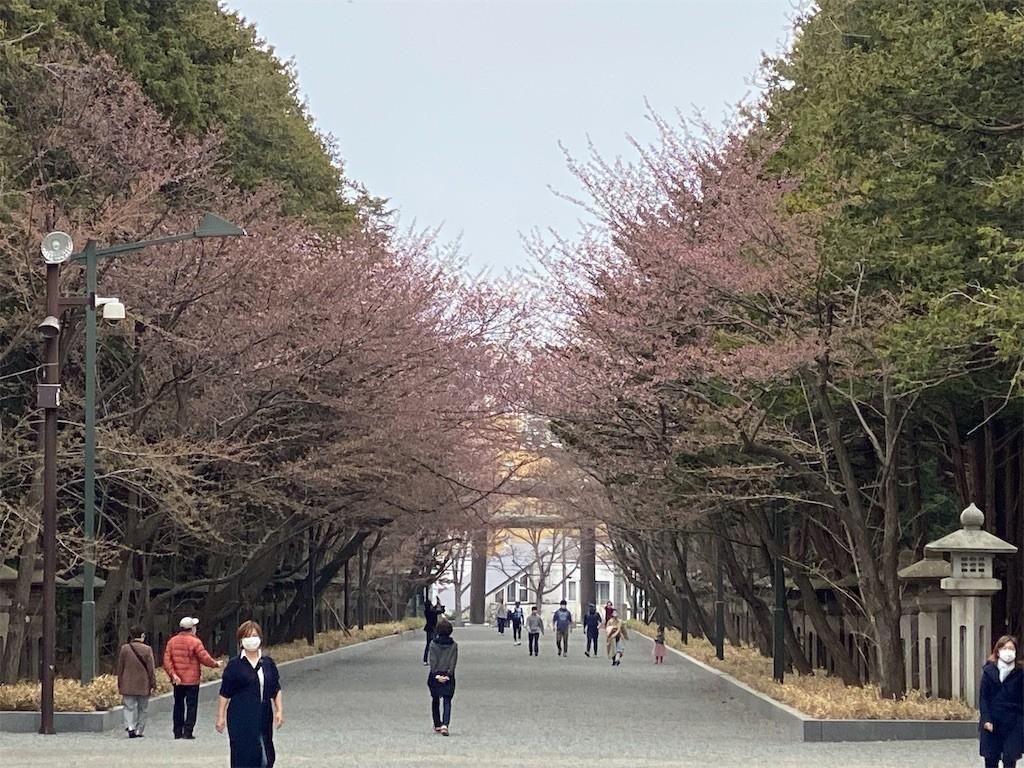 f:id:jironakayama:20200502215935j:image