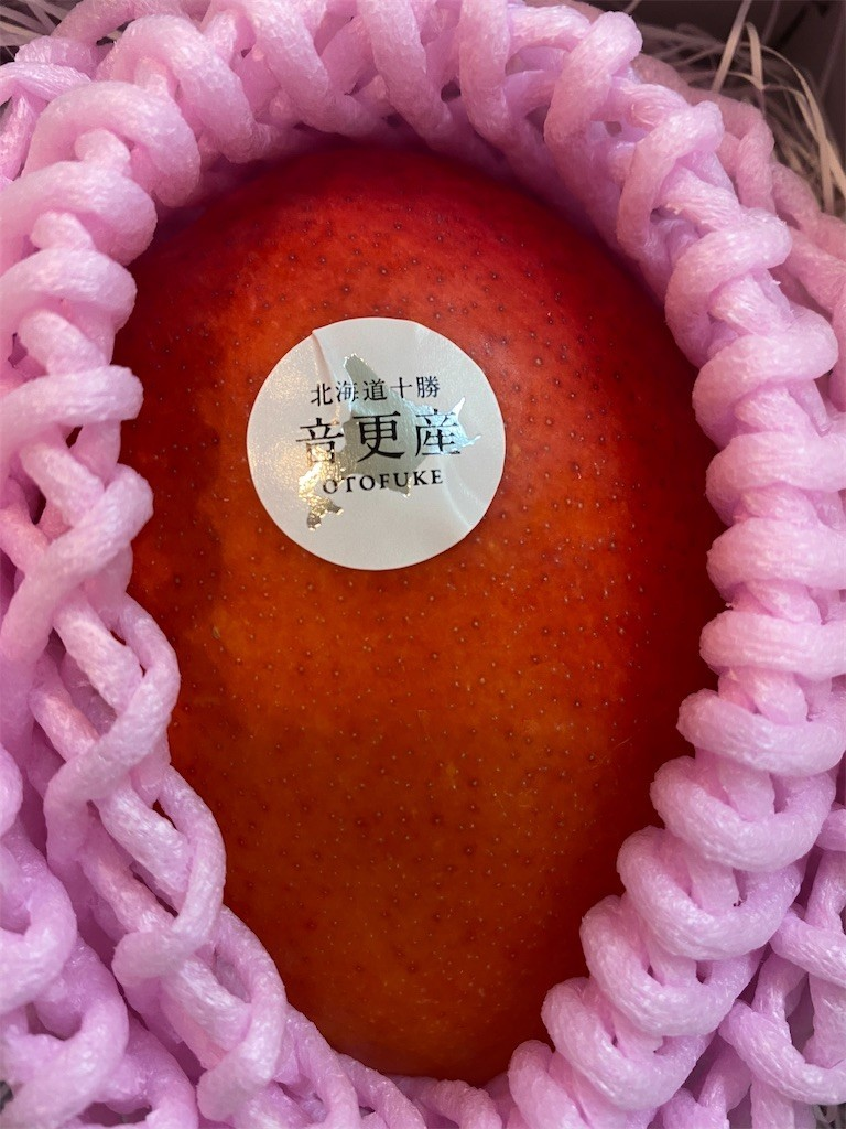 f:id:jironakayama:20201209223556j:image
