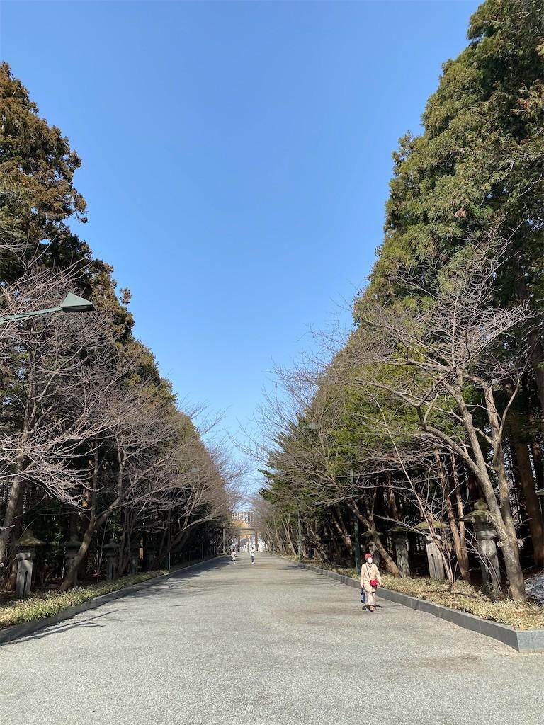 f:id:jironakayama:20210401070553j:image