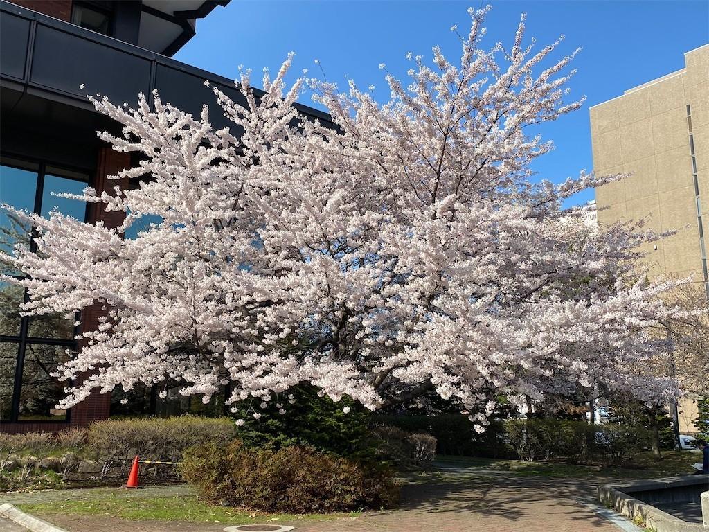 f:id:jironakayama:20210428223941j:image