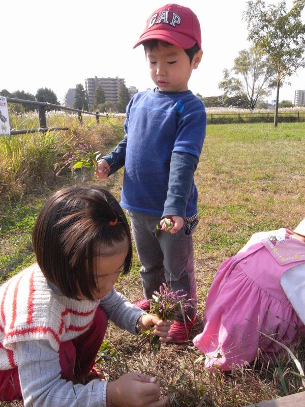 f:id:jisyuhoikuomusubi:20121031100025j:image:w360