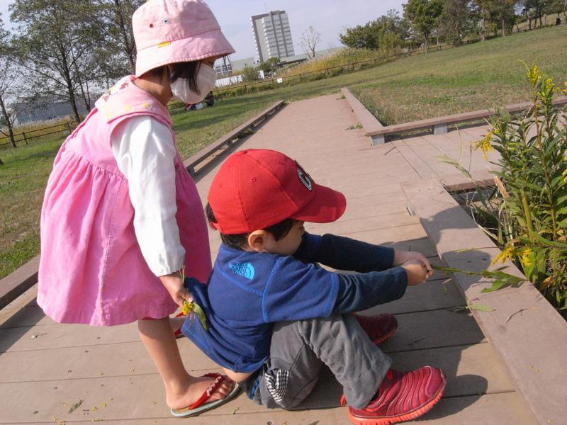 f:id:jisyuhoikuomusubi:20121031101244j:image:w360