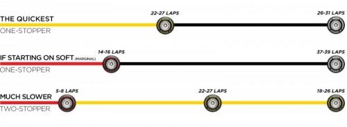 F1 フランスグランプリ 決勝 タイヤ戦略