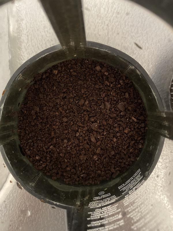フレンチプレスに挽いた豆を入れる