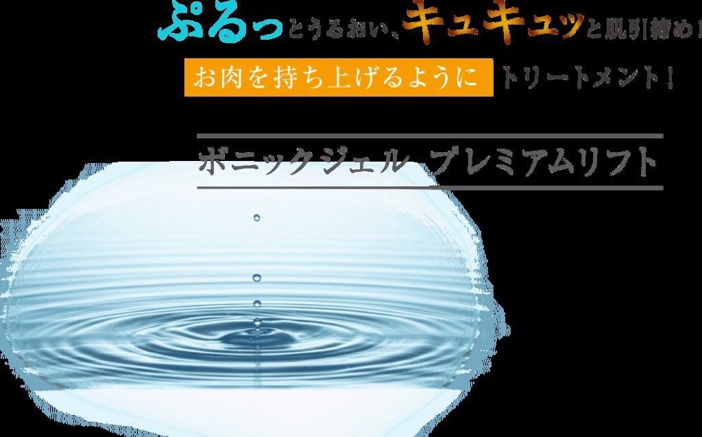 f:id:jitumatsu:20171214182140p:plain