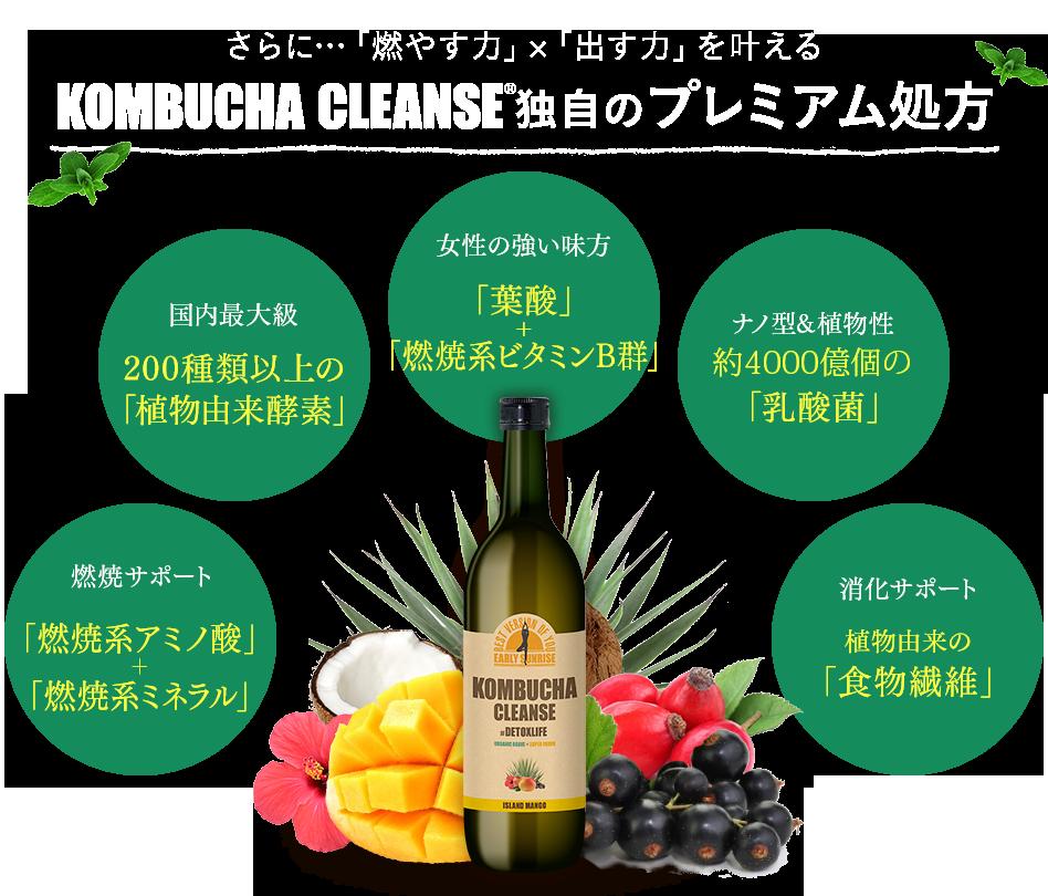 f:id:jitumatsu:20180327123621p:plain