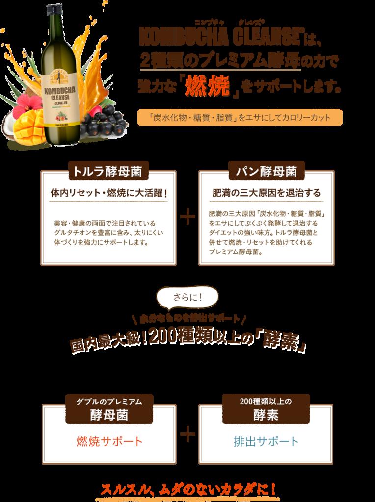 f:id:jitumatsu:20180420221326p:plain